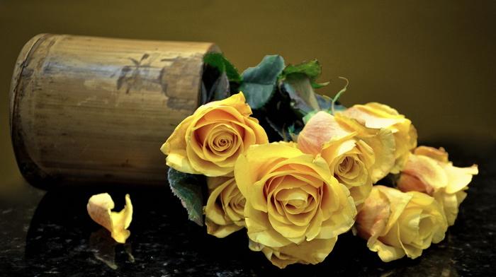 bouquet, roses, vase, flowers, petals