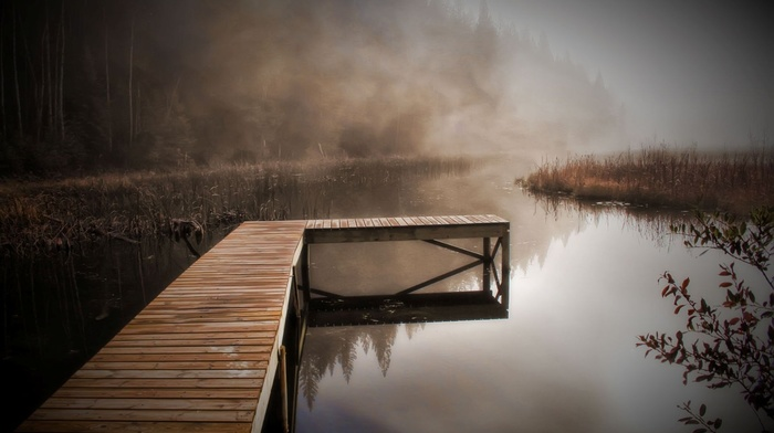 river, coast, autumn, nature, mist, pier, forest, morning