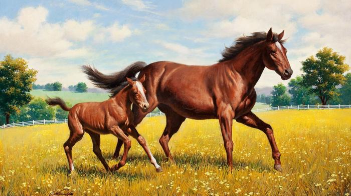 animals, painting, grassland, horse