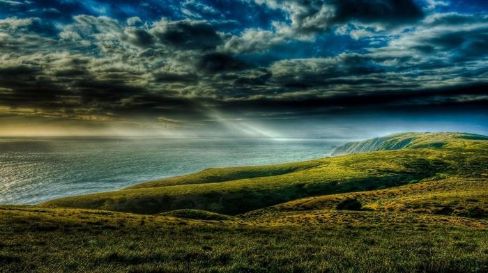 grass, nature, ocean, coast