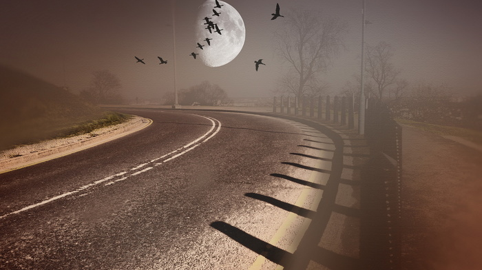 style, background, 3D, road, birds