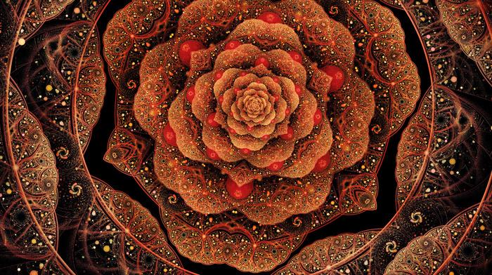 3D, flower, patterns, petals, art