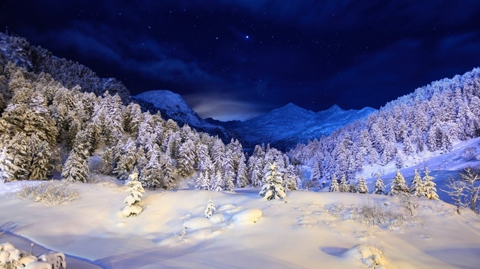 forest, stars, snow, mountain, Christmas tree, winter