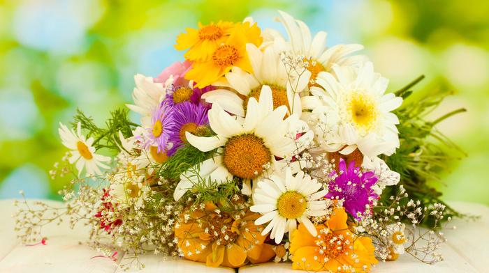 bouquet, flowers, chamomile