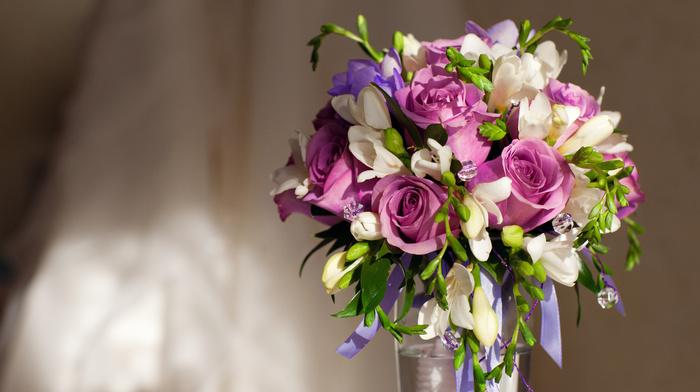 roses, bouquet, flowers, purple flowers