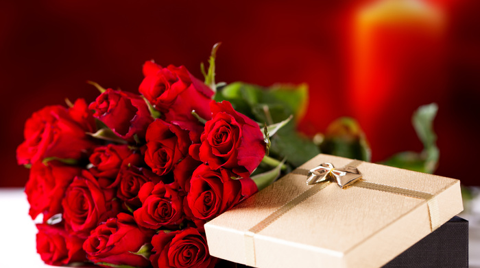 gift, holiday, bouquet, flowers, roses