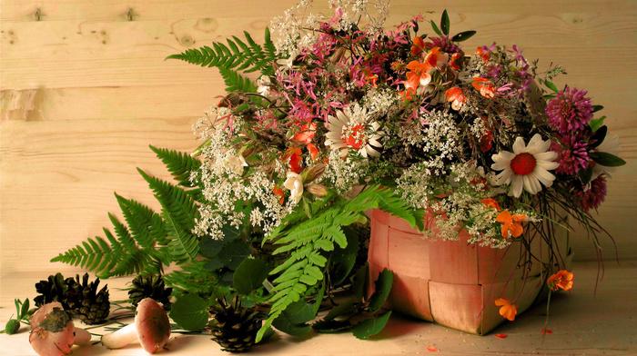 cones, basket, leaves, flowers