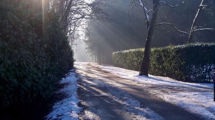 свет, лед, дорога, зима, снег