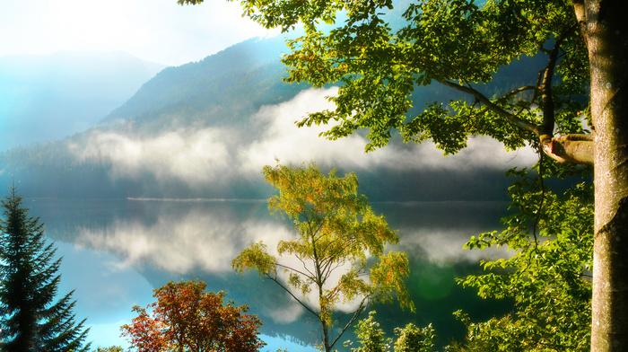 горы, отражение, туман, утро, деревья, лес, озеро, природа