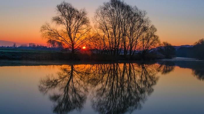 England, trees, nature, evening, Sun, UK, glade