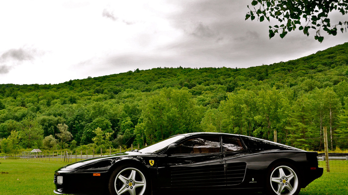 nature, forest, Italy, sportcar, trees, Ferrari, grassland, wheels, cars, black