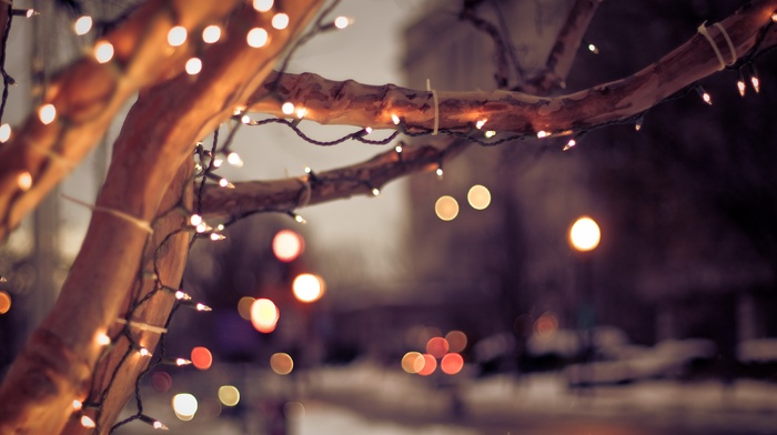 city, cityscape, bokeh, trees, lights, winter, Christmas, nature, urban, depth of field