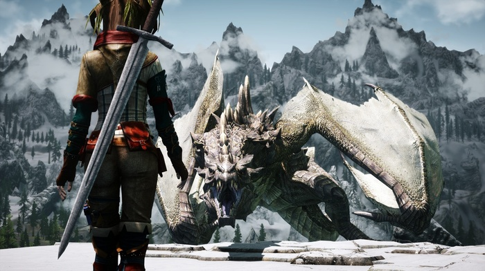3D, The Elder Scrolls, dragonborn, girl, screenshots, dragon, the elder scrolls v skyrim