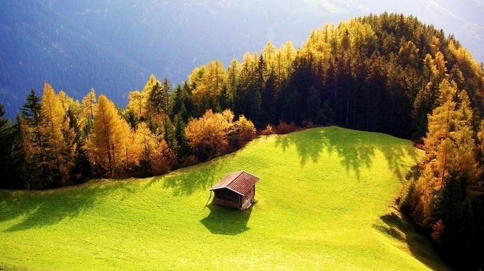 mountain, sky, beauty, lodge, trees, greenery, forest, stunner, field