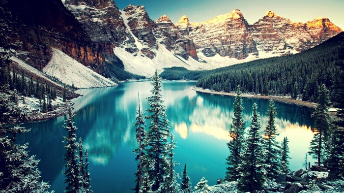 pine trees, water, moraine lake, trees, banff national park, mountain, forest, snow, valley, lake, Canada