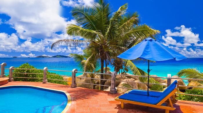 swimming pool, palm, stunner