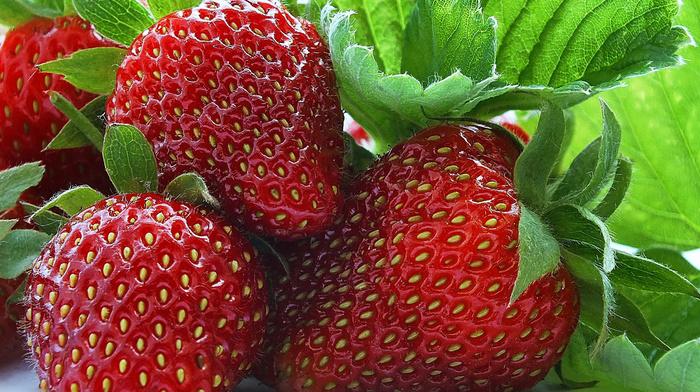 fruits, berries, macro, strawberry