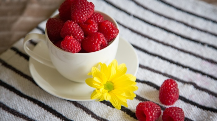 fruits, macro, flower, cup, delicious