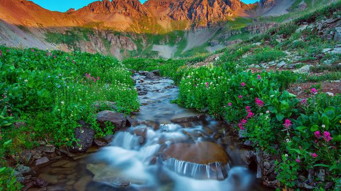 sky, flowers, mountain, creek, sunset, nature