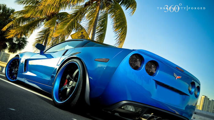 palm, cars