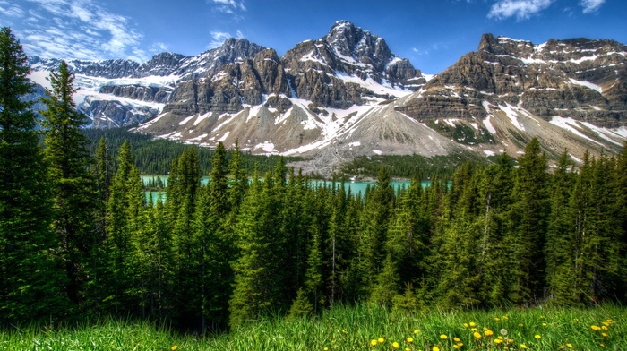 snow, spring, Canada, nature, flowers, glade, forest, lake, sky, mountain