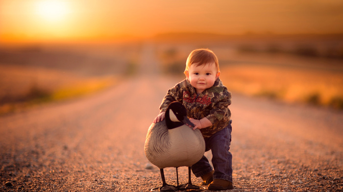 bird, stunner, boy, child, bokeh, road