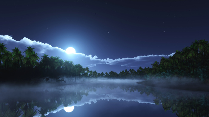 palm trees, tropics, sky, bay, clouds, moon, nature, mist