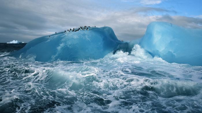 nature, penguins, clouds, splash, ocean, ice, wave, sky