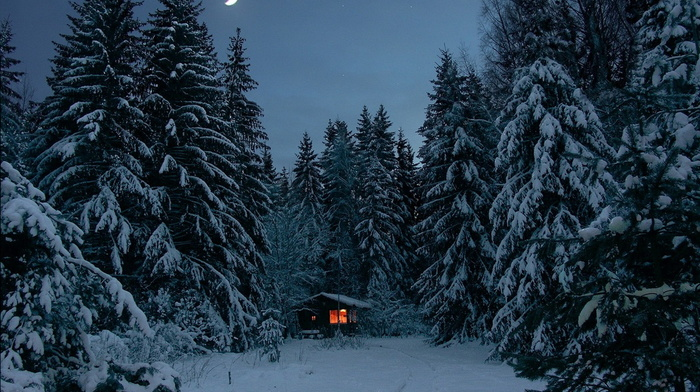 snow, forest, beauty, winter, trees, moon, lights, lodge