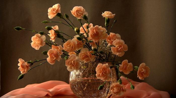 vase, beauty, flowers, still life