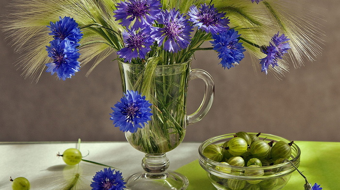 wineglass, still life, flowers, beauty, stunner