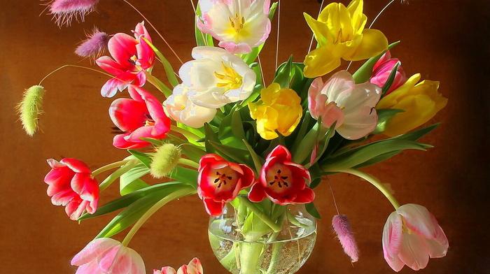 still life, vase, beauty, flowers