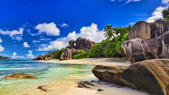 nature, sky, stunner, ocean, summer, tropics, beach, beautiful, palm trees, clouds