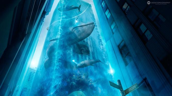 Desktopography, photo manipulation, whale, digital art, water