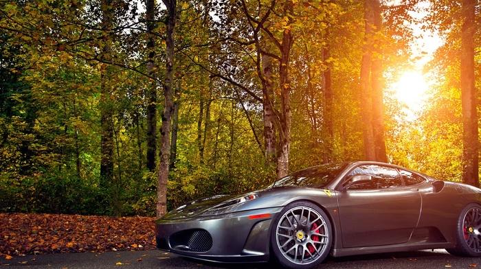 road, cars, autumn, ferrari, forest, Ferrari, light