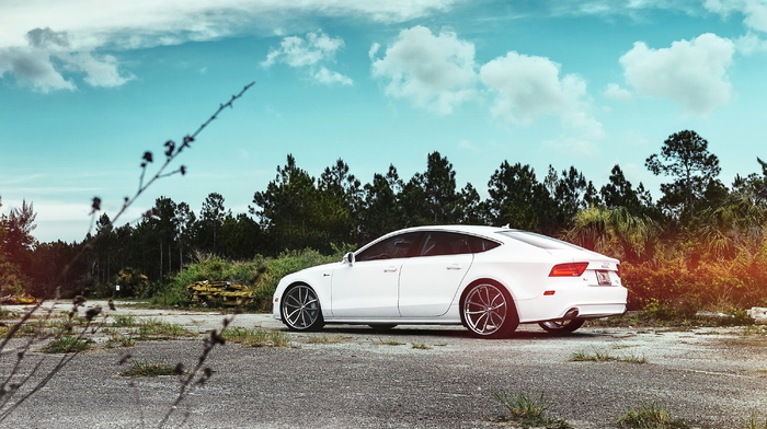 photo, Audi, cars, white, supercar, forest, wheels, parking
