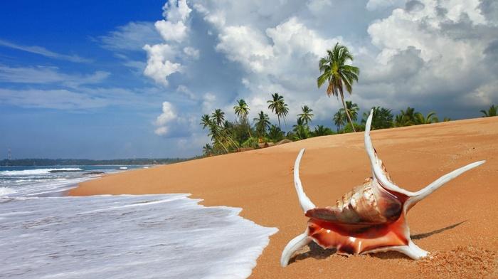 summer, sand, landscape, beach, water, clouds, sky, nature, ocean