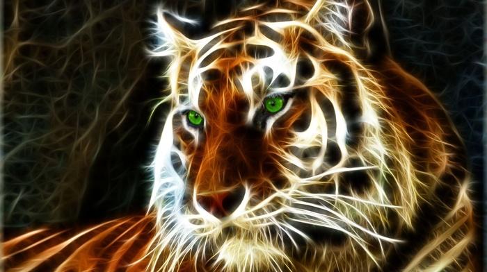 art, 3D, photoshop, predator, tiger