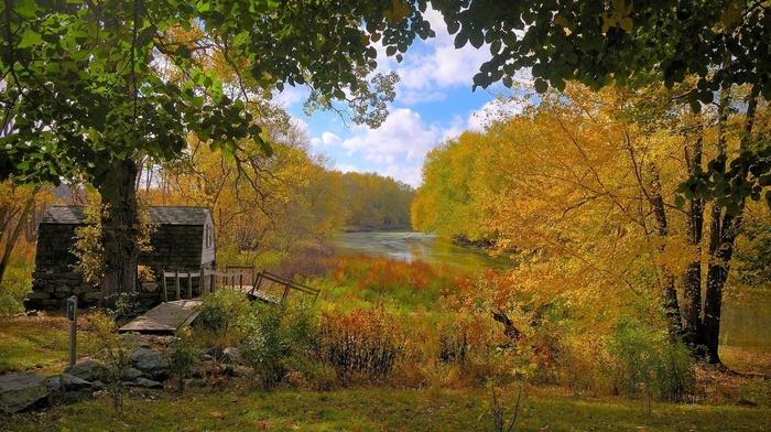 forest, autumn, lodge, sky