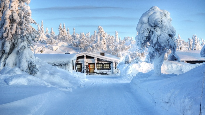 lodge, winter, snow, forest, trees
