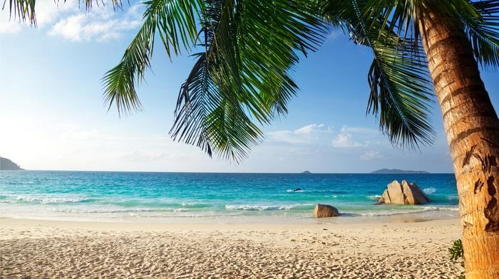 tropics, summer, beautiful, beach, nature, ocean