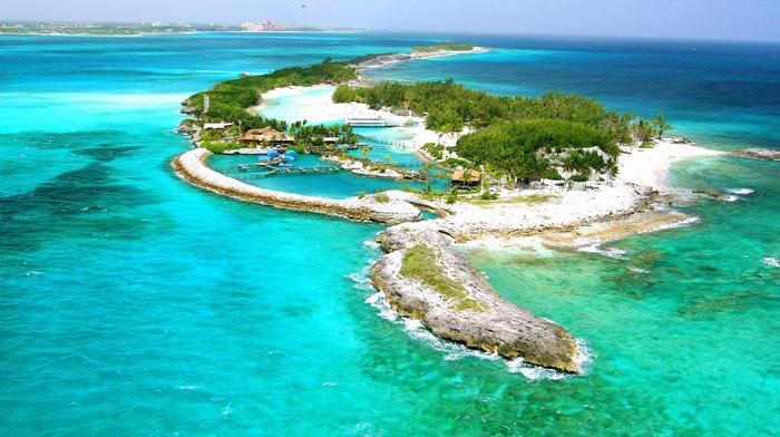 palm trees, resort, nature, tropics, positive, island, rest, ocean