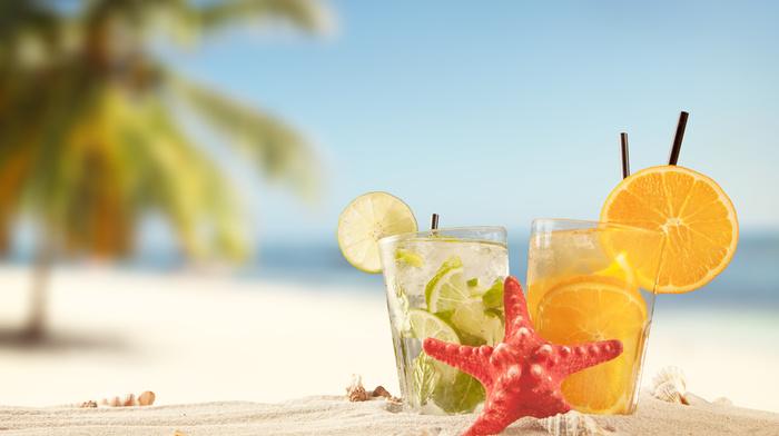 лайм, лед, коктейль, пляж, морская звезда, пара, жажда, вкусно, Апельсин, природа, ракушки, утоление, макро, песок, пальмы