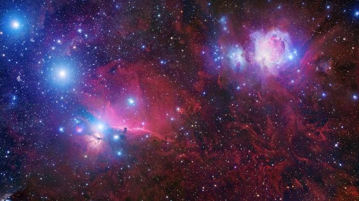 nebula, Horsehead Nebula, stars, space