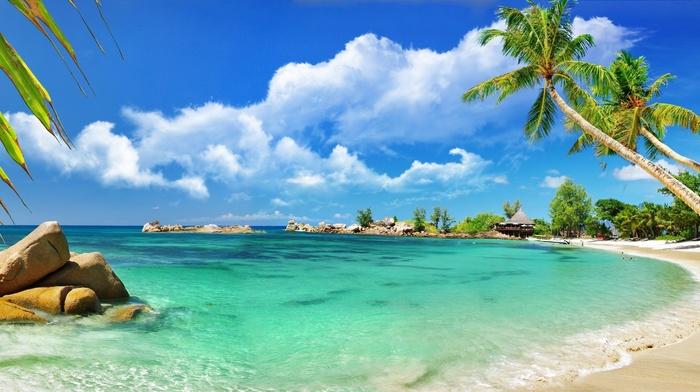 sky, clouds, tropics, beach, stunner, ocean, palm trees, beautiful, stones, summer, nature, resort
