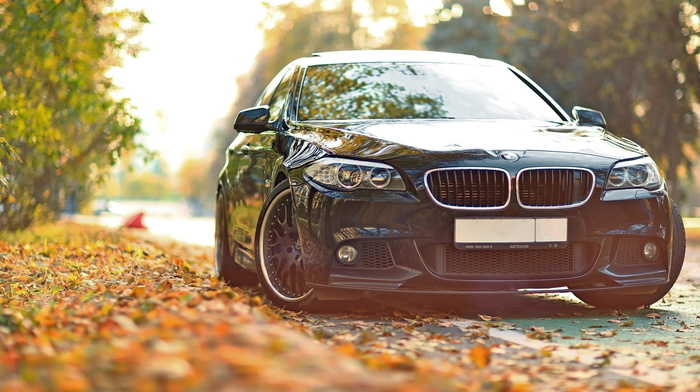 tuning, leaves, BMW, bmw, cars, autumn