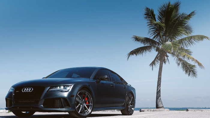 Audi, cars, supercar, parking, palm, ocean