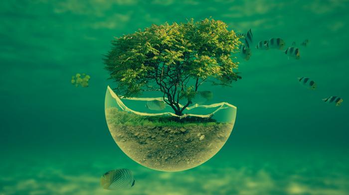 underwater, photoshop, nature, fantasy, stunner, tree
