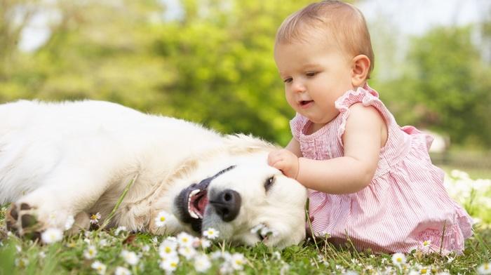 child, positive, super, flowers, girlie, children, dog, photo, nature