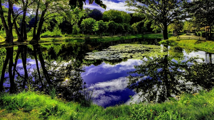 sky, trees, art, park, photoshop, lake, nature, reflection
